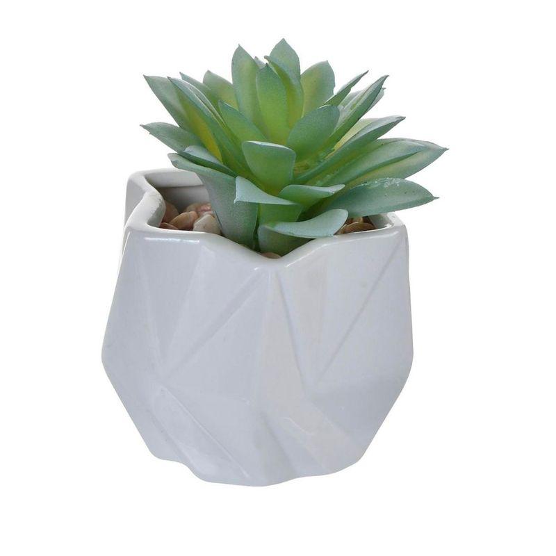 planta-decorativa-concepts-8x10-cm-eckohogar-1